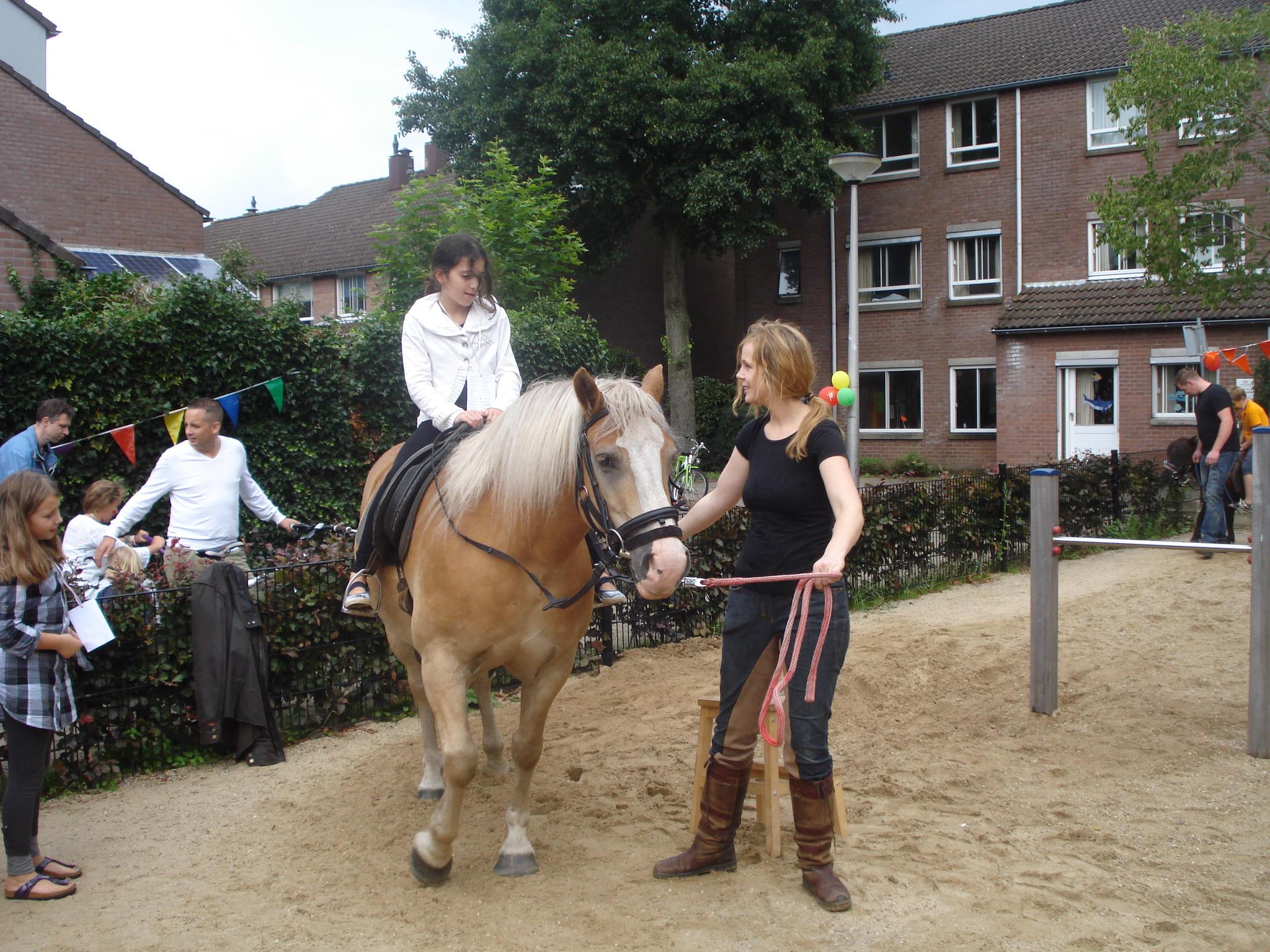 pleinfeest 2011 (22)