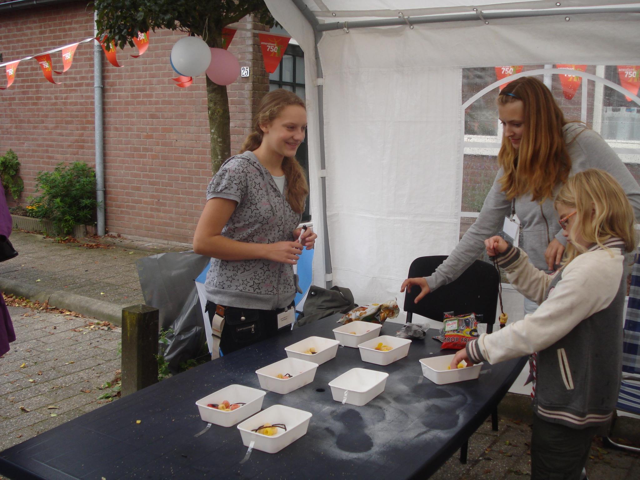 pleinfeest 2011 (7)